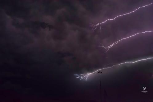 LA lightning 1 flipped