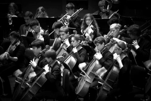 CYS Cellos bw