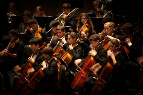 CYS Cellos
