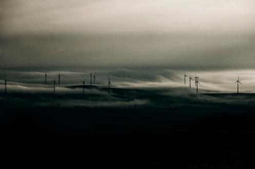 Windmills 1 bw