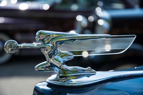 Packard 7